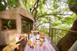 リゾナーレ熱海の森の空中基地