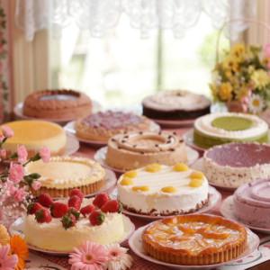 パディントンのケーキ