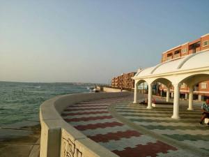 これ、宮城海岸。遊歩道のすぐ下が海です☆
