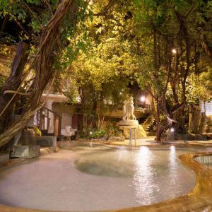 泰泉閣のジャングル風呂