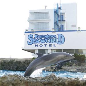 鴨川シーワールドホテルから見えるイルカ