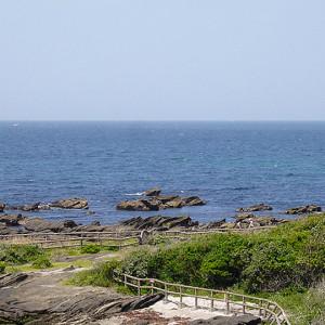 佐島マリーナから見た海