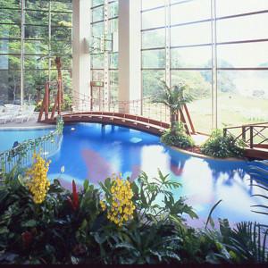 ニュー銀水の屋内プール