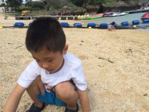 タイガービーチで貝殻拾い