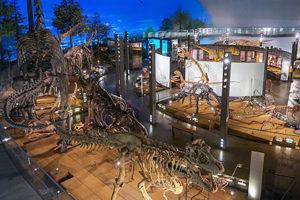 ホテルハーヴェストスキージャム勝山の恐竜博物館