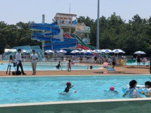フェニックス自然動物園の流れるプール